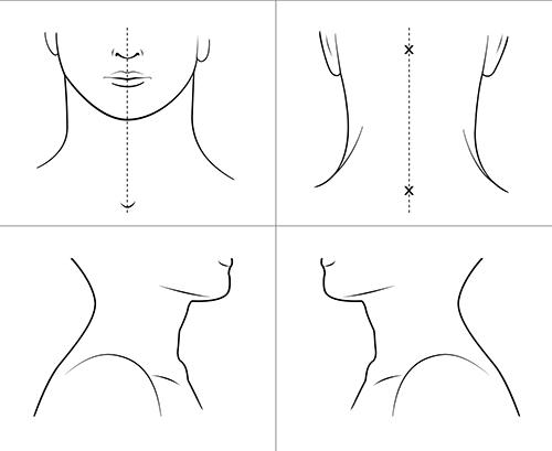 Kroppsskiss över halsen